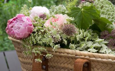 Comment photographier un bouquet de fleurs
