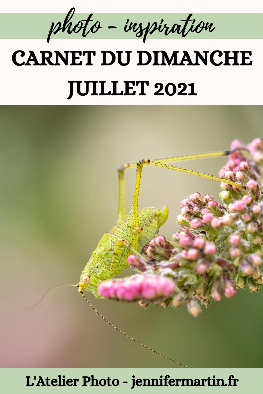 L'Atelier Photo | Petit carnet du dimanche - juillet 2021