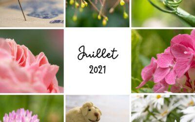 Mon projet photo 365 – juillet 2021